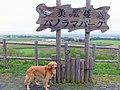 美漫パノラマパーク - panoramio.jpg