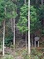 黒滝村粟飯谷 妙見神社の石段 Stone steps of Myōken-jinja 2011.4.26 - panoramio.jpg