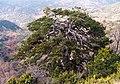 - panoramio - georgios (9).jpg