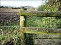 ... the way to go. - Flickr - BazzaDaRambler.jpg