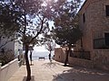 07159 Sant Elm, Illes Balears, Spain - panoramio (84).jpg