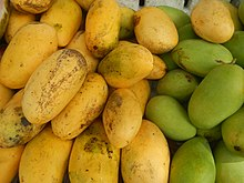 Mango Fruit Pictures