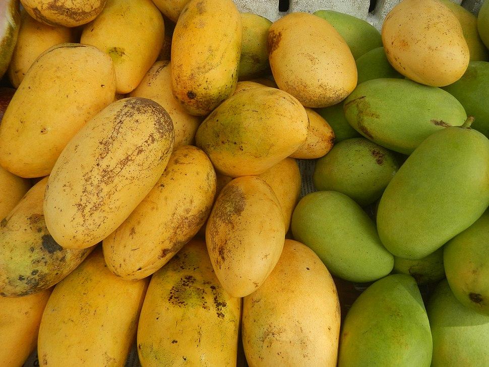 09251jfFilipino foods fruits Bulacan landmarksfvf 37
