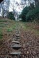 101 steps, Rusthall Common. - geograph.org.uk - 1103859.jpg