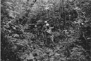 Three soldiers on patrol in dense Vietnam jungle.