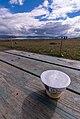 17-08-05-Þingvellir-RalfR-DSC 2661.jpg