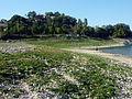 18 Lago di Turano.jpg
