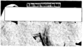 1965 FBI monograph on Nation of Islam - Properly dressed sisters of NOI (redacted).png