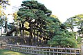 1 Hamarikyūteien, Chūō-ku, Tōkyō-to 104-0046, Japan - panoramio (4).jpg