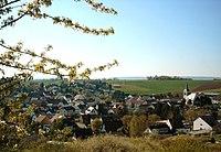 1l-Blick aus den Weinbergen nach Traisen.jpg