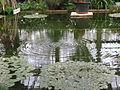 20070318 Serres Plantentuin Gent (029).jpg