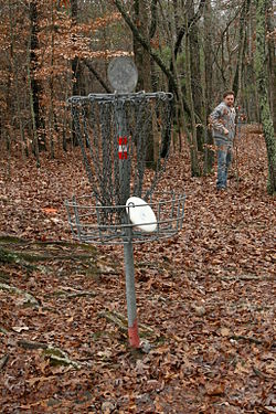 2009-01-04 Nate Dizo's disc in basket.jpg