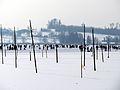 2012 'Seegfrörni' - Pfäffikersee - Pfäffikon 2012-02-12 13-44-37 (SX230).JPG
