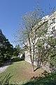 20150829 Braunau, Stadtmauer 1443.jpg
