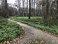 2020-12-12-Hike-to-Rheydt-Palace-and-its-surroundings.-Foto-33.jpg