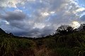 208, Taiwan, 新北市金山區重和里 - panoramio (2).jpg