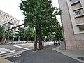 2 Chome Hitotsubashi, Chiyoda-ku, Tōkyō-to 100-0003, Japan - panoramio (5).jpg