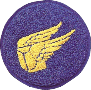 315th Troop Carrier Group - Emblem.png