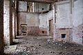 4766viki Pałac w Brzezince. Foto Barbara Maliszewska.jpg