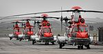 4 CHC helicopters at Aberdeen Airport.jpg