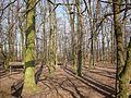 59368 Werne, Germany - panoramio (3).jpg