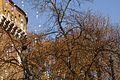 7273vik Planty krakowskie. Foto Barbara Maliszewska.jpg
