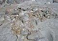 9370 Plage de Ty Anquer.jpg