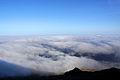 Açores 2010-07-22 (5131182036).jpg
