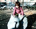 ABC Playground.jpg