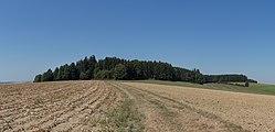AT 68546 Hügelgräberfeld Lohnergut, Mörschwang-9189.jpg