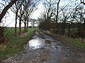 A Bridleway To Shiptonthorpe - geograph.org.uk - 302476.jpg
