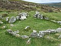 A Dartmoor Sheep shelters in a Grimspound Hut Circle - geograph.org.uk - 653641.jpg