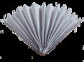 A Homemade Hand Fan.png