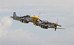 A Pair of Mustang P-51s 4 (5927855076).jpg