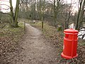 A bit of colour on a reserve path - geograph.org.uk - 1098508.jpg