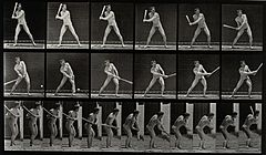 A man hitting a ball with a bat. Photogravure after Eadweard Wellcome V0048666.jpg