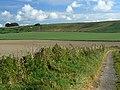 A view of Hackpen Hill, near Winterbourne Bassett - geograph.org.uk - 1010217.jpg