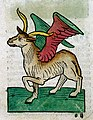 A winged mythical creature, woodcut, 1547 Wellcome L0029219.jpg