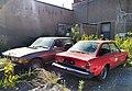 Abandoned Fiat (29482724952).jpg