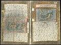 Adriaen Coenen's Visboeck - KB 78 E 54 - folios 191v (left) and 192r (right).jpg
