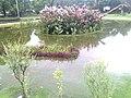 After rainig - panoramio.jpg