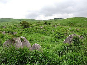 Mine, Yamaguchi - Karst landscape of Akiyoshidai