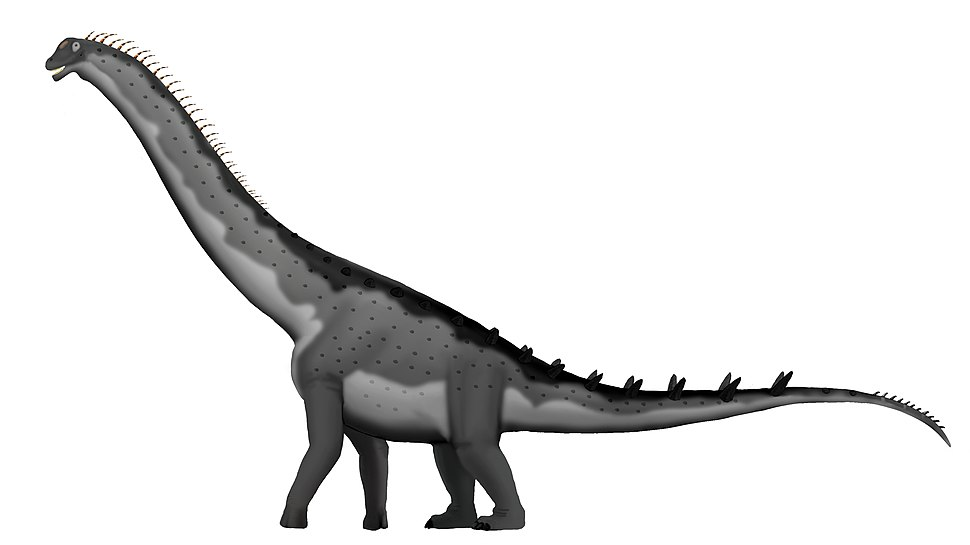 Alamosaurus-sanjuanensis