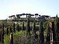 Albano Laziale Monte Savello e ruderi Castel Savello.JPG