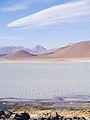 Altiplano, Bolivien (11214207074).jpg