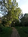 Anella verda - Font dels Frares - panoramio.jpg