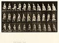Animal locomotion. Plate 139 (Boston Public Library).jpg