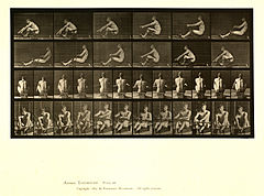 Animal locomotion. Plate 327 (Boston Public Library).jpg