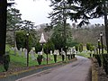 Another part of Bridgnorth Cemetery - geograph.org.uk - 720273.jpg
