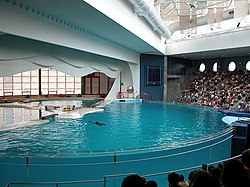 List of dolphinariums - Wikipedia